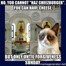 Cheezburger Meme Builder - no you cannot haz cheezburger you can have cheese but only