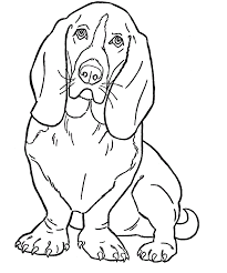 excellent dogs color kids coloring 8261 unknown