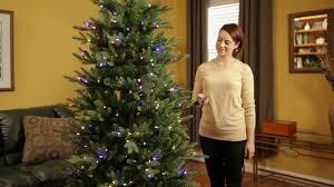 santa u0027s best grand fraser fir christmas tree with 8 light