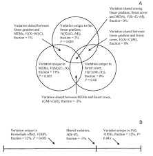the role of terrestrial bromeliads in determining the spatial