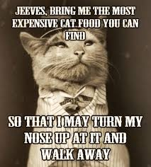 Sophisticated Cat Meme Generator - old money cat meme tc free market
