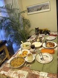 which store is open on thanksgiving 9 things cat owners experience on thanksgiving u2013 meowingtons