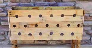 she drills 19 holes in a wooden planter box 5 months later