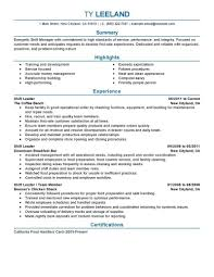 Resume Sample Respiratory Therapist by 66 Free Downloadable Resume Examples For Hospitality Industry