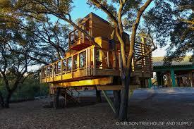 treehouse masters nelson treehouse u2014 nelson treehouse