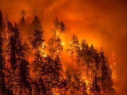 Wildfire Golf Club Canada by Wildfire Season 2017 2 Million Acres Are Burning Across The Us