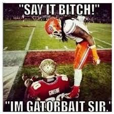 Florida Gator Memes - go gators pinteres
