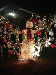Christmas Light Balls For Trees by Holiday Lights The Wilson Times