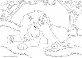 lion colouring pages