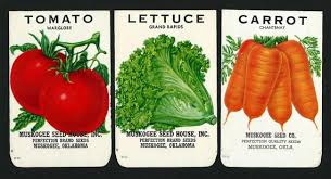seed packets seed packets clipart 61