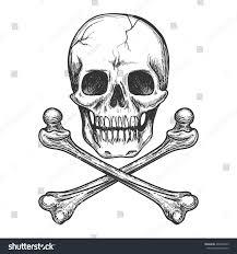 skull crossbones biker jacket vector stock vector hd royalty