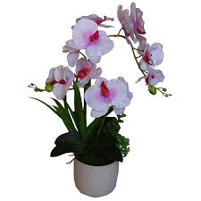 Artificial Orchids 42cm Potted Artificial Orchids Dongyi