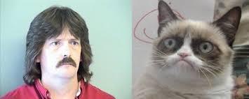 Meme Generator Grumpy Cat - grumpy cats father memes imgflip