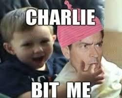 Charlie Sheen Memes - greenacresgardens photo keywords memes