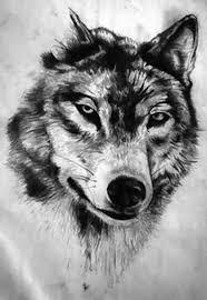 50 amazing wolf designs golfian com