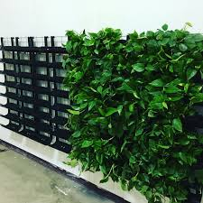vertical living wall vertexx installation guide youtube