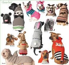 pet sweaters large sweaters for big dogs bigdog boutique