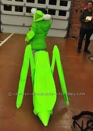 Halloween Bug Costumes 50 Buggy Costumes Images Halloween Ideas