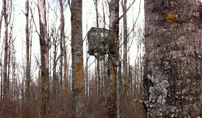 big tree stand blinds how to create tree stand concealment