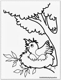 bird coloring pages kids