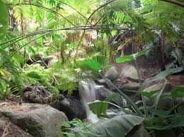 Quail Botanical Gardens Free Tuesday San Diego Botanic Garden An Enchanting Place For Children