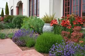 Garden Shrubs Ideas Garden Shrubs Ideas Home Interior Design