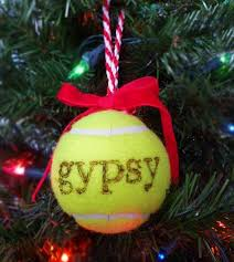 best 25 dog christmas presents ideas on pinterest christmas