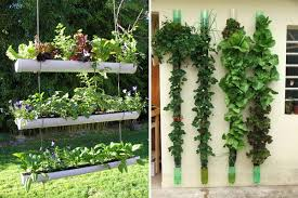 5 vertical garden ideas interiorholic com