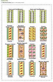 homey design vegetable garden design 17 best ideas about backyard