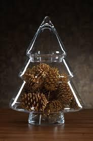 zodax clear glass tree jar nordstrom rack
