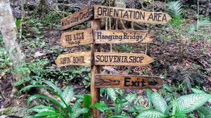 Shoo Rainforest Shop december 2017 gallivantrix