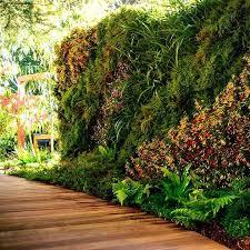 living garden walls u2013 weightloss
