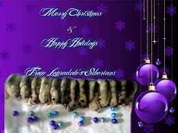 husky merry and happy holidays