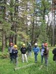 Lewis and Clark National Forest - About the Forest fs.usda.gov