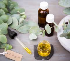 the man u0027s guide to essential oils