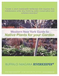 native water plants riverkeeper guide to native plants for your garden u2013 buffalo rising