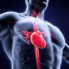immunschwäche symptome gürtelrose alle ursachen und auslöser therapie der zoster infektion