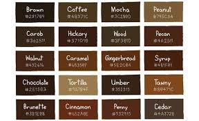 colors that go with brown does brown go with blue quora