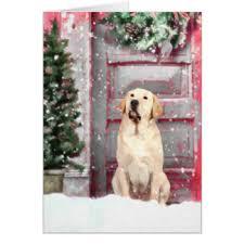 labrador greeting cards zazzle