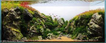 Aquascape Design Layout The Nature Aquarium Style U2022 Aquascaping Love
