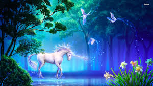 meditation to connect with your unicorn and the higher dimensions