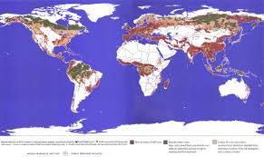 Russian Boreal Forest Disturbance Maps by The Last Frontier Forests Ecosystems U0026 Economies On The Edge Wri