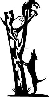 coon hunting coon dog hunting decal