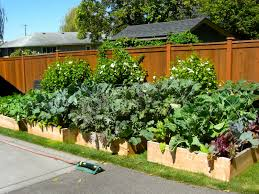 wooden fence for small backyard garden spaces with diy raised bed