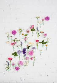 104 best h u0026g botanische prenten images on pinterest botanical