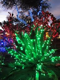 wendys open on thanksgiving cactus garden lights christmas tradition wendys hat
