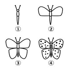draw a butterfly for