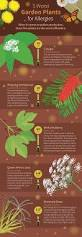 trees are also native plants the best and worst plants for your garden if you have allergies