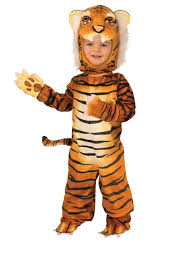 White Tiger Halloween Costume Toddler Tiger Costume Sits Pumpkin Halloween Theme Stock