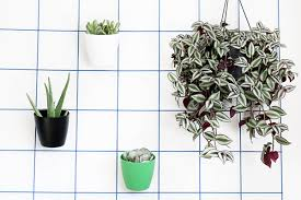 planters that hang on the wall diy wall planters teach you how to greenify your home